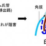 ryokunaisyo-12