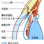 ryokunaisyo-4